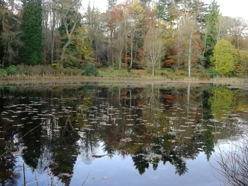 """alt=""""Hadrians Wall Area Days out in Northumberland National Trust Wallington Hall Pond"""""""