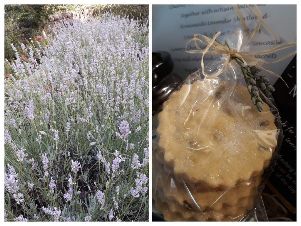 "alt=""lavender shortbread biscuits supporting sustainable rural tourism"""