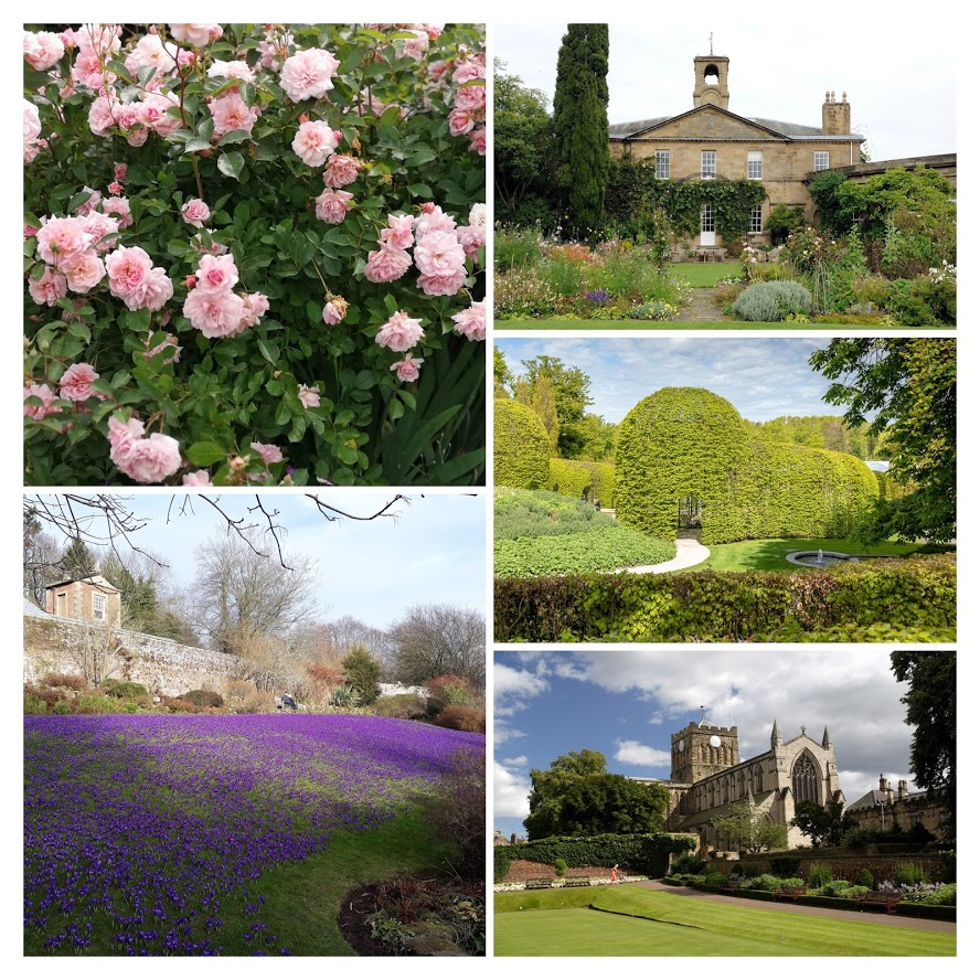 "alt=""gardens in Northumberland collage"""