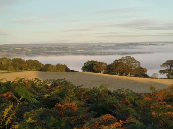 "alt=""autumn walks at St Oswald's Farm in the mist"""
