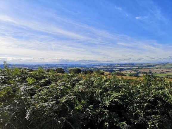 "alt=""romantic view of fields and blue skies from St Oswalds Farm"""