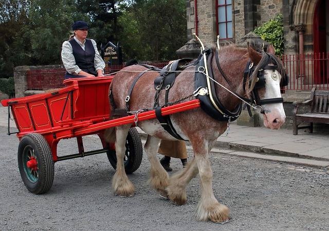 "alt=""horse and cart at Beamish"""