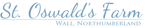 Hadrian's Wall holiday cottage